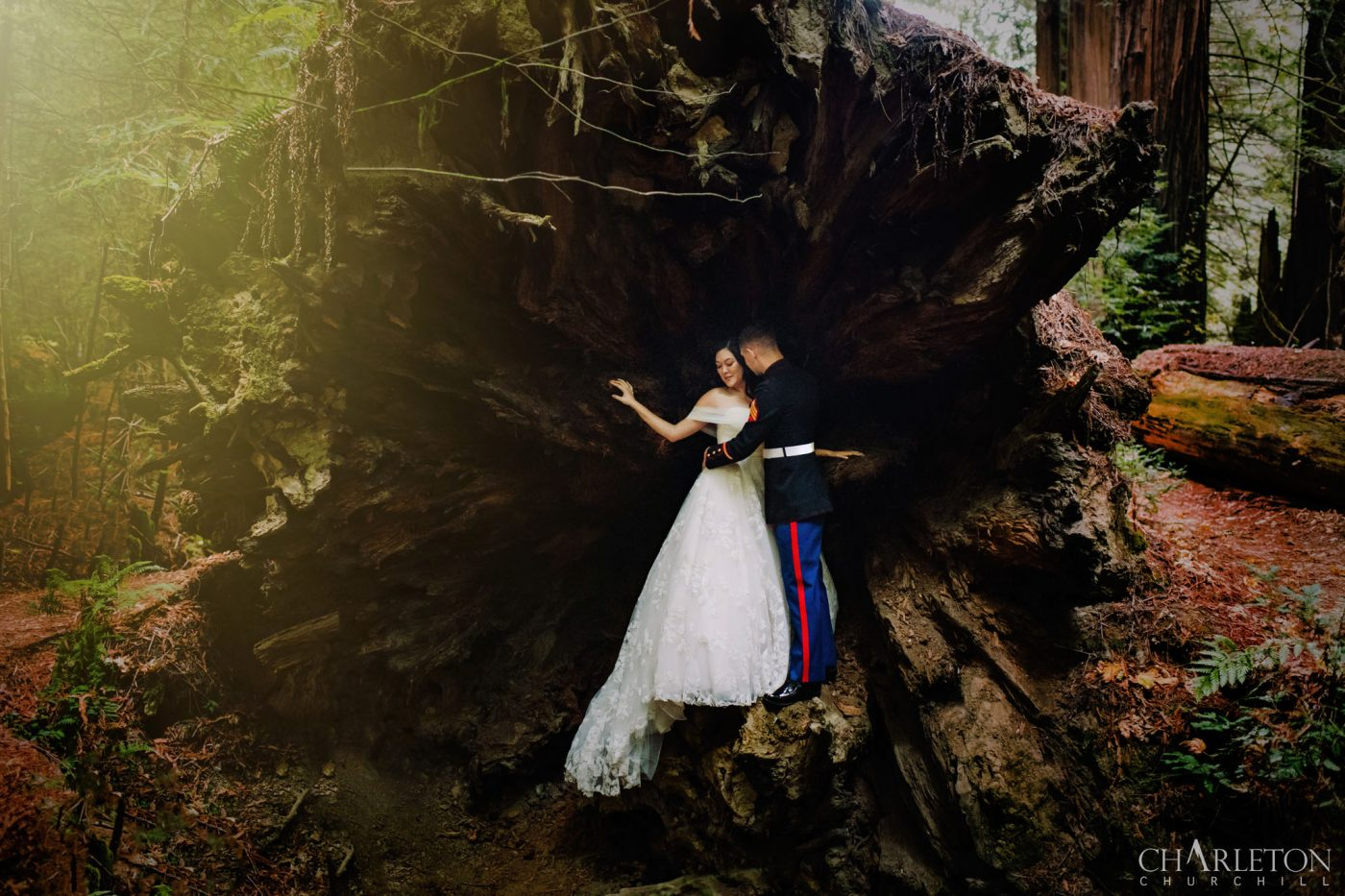 redwoods state park elopement wedding at avenue of the giants