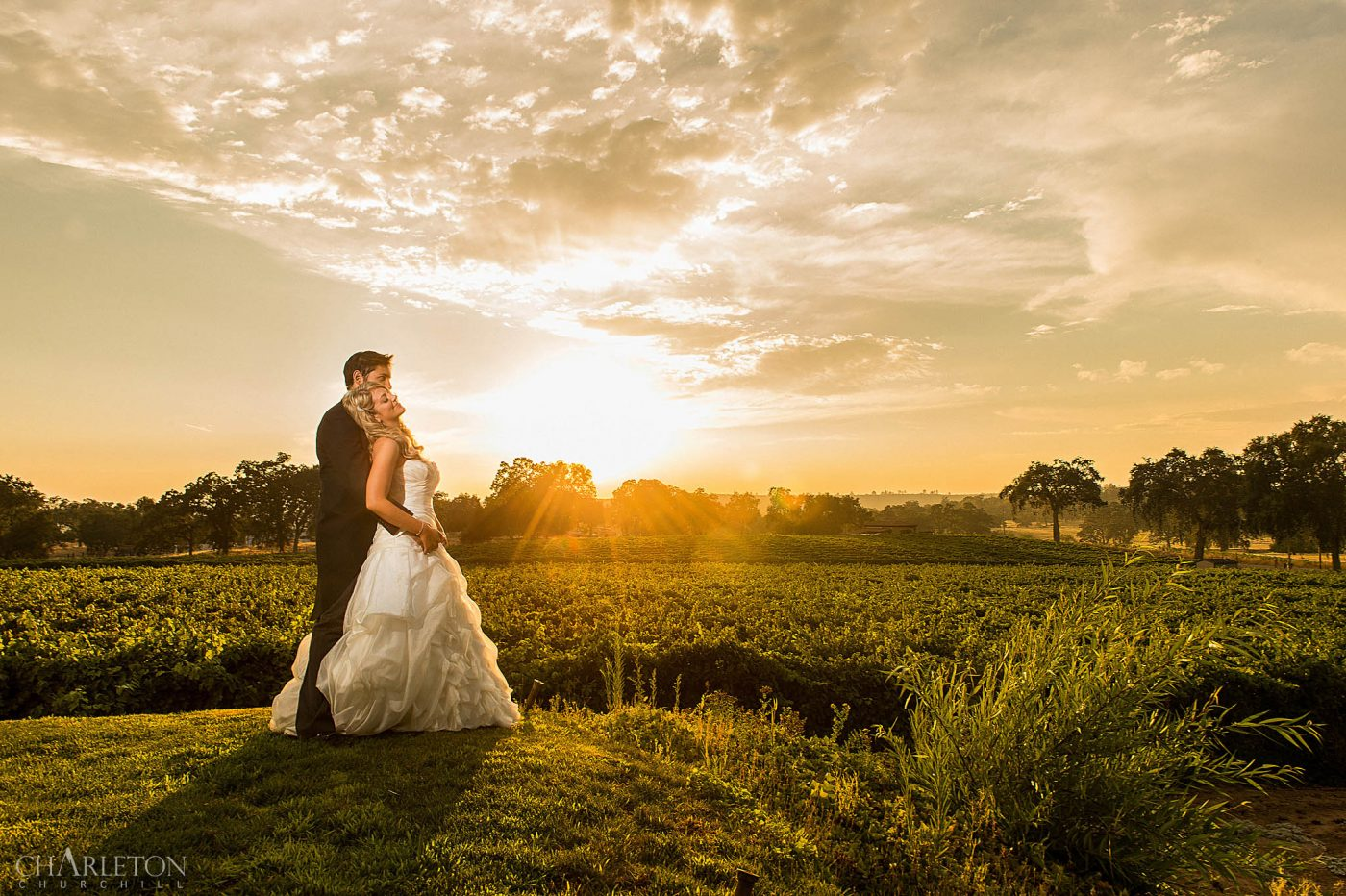 plymouth wedding photographer capturing sunset of wedding couple at bella piazza over vineyard