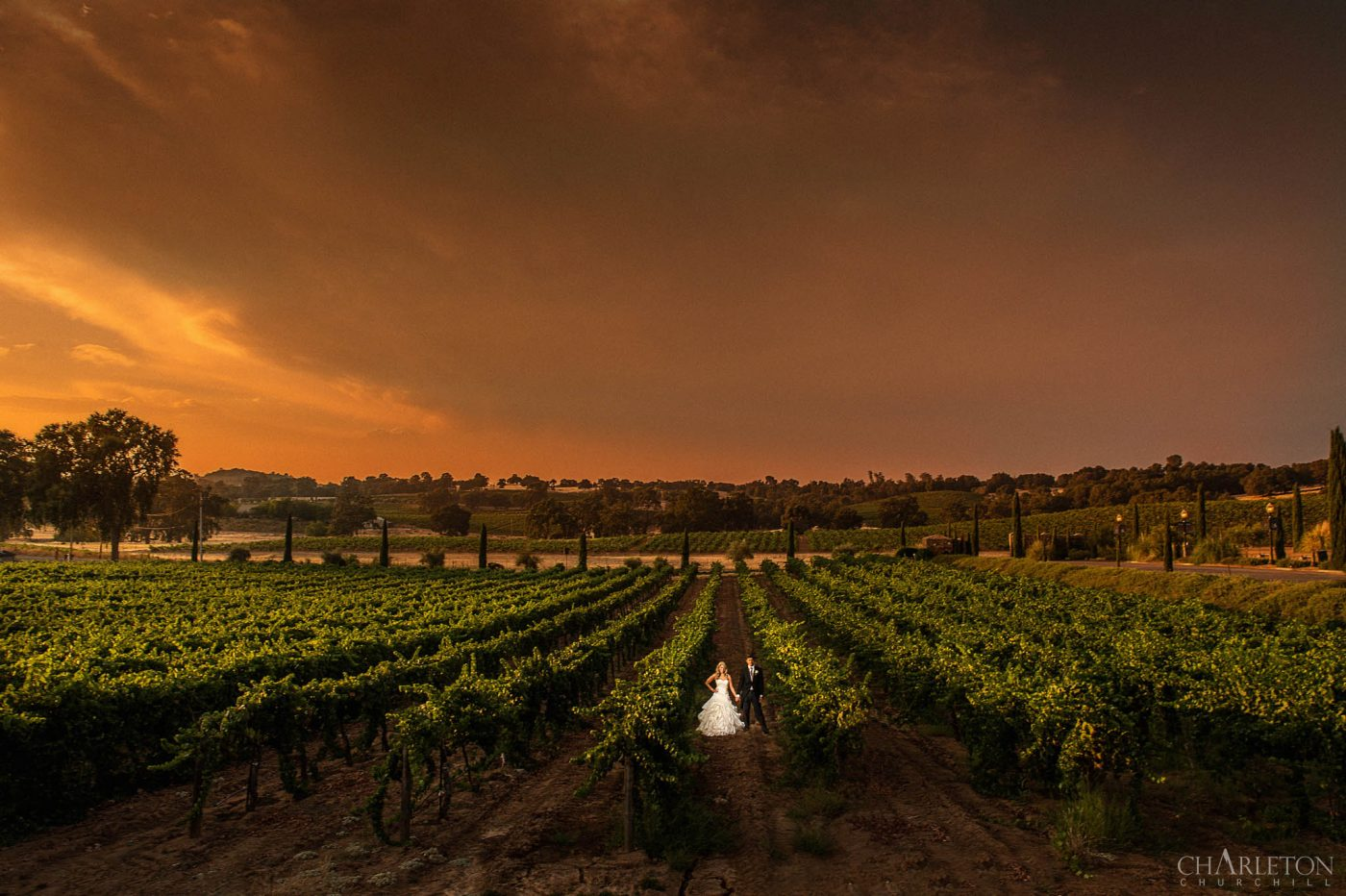 amador county wedding photographer charleton churchill at bella piazza winery with couple venue in the vineyard