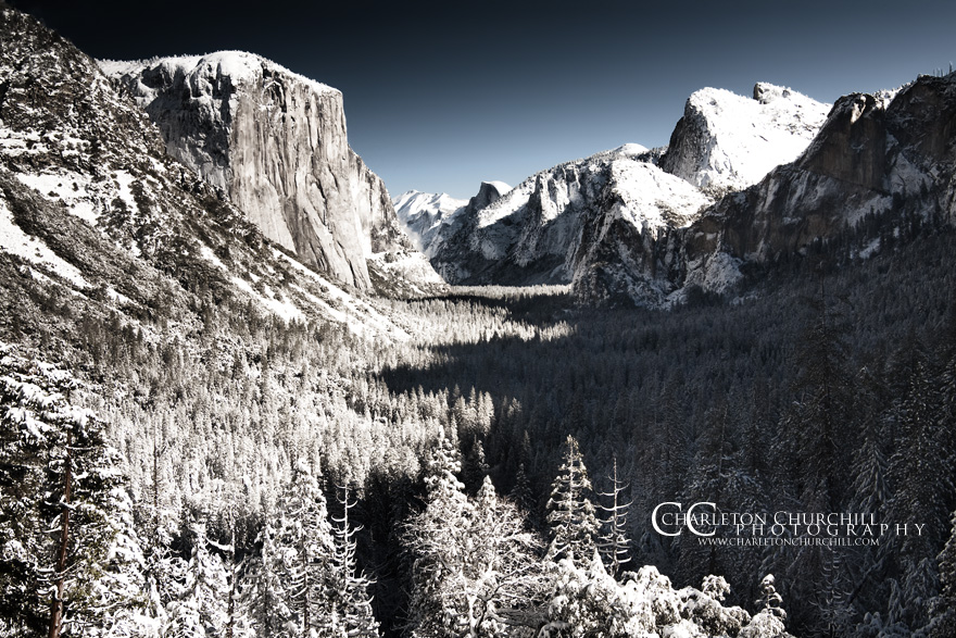 infrared wedding photograph possibility at Yosemite