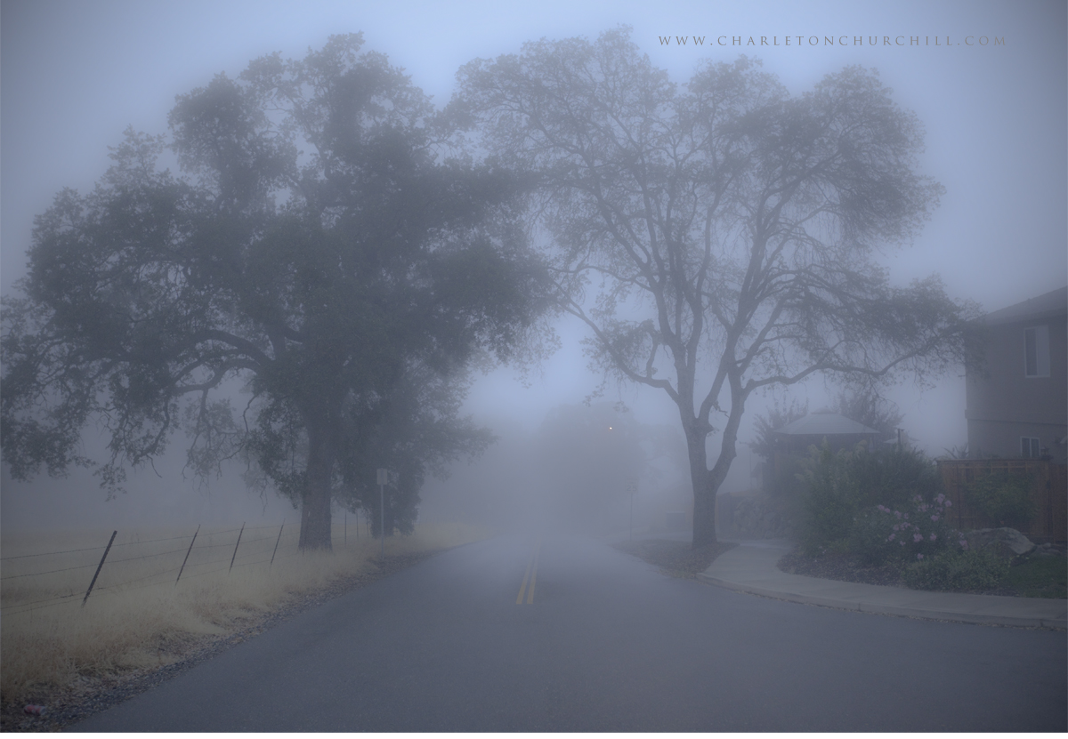 foggy_sept2009web