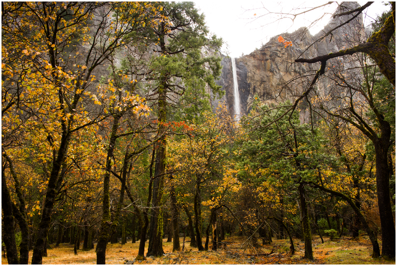 yosemite falls waterfall at national park in fall rain November wedding