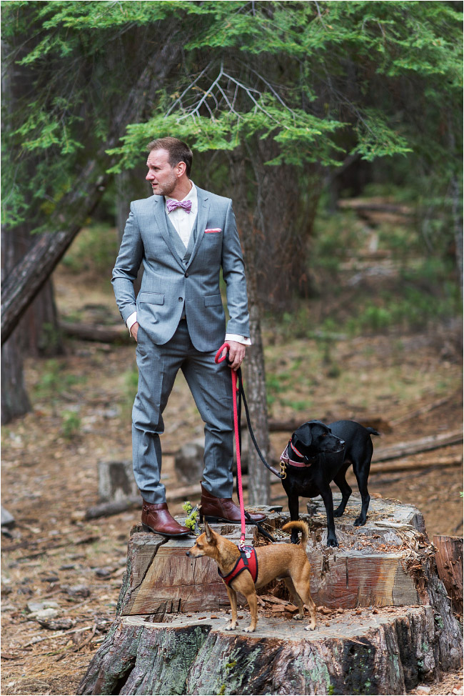groom at yosemite wedding with dogs