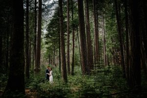 yosemite engagement session adventure
