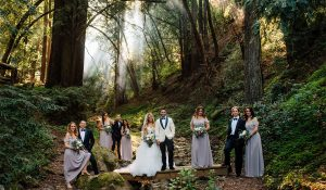 wedding party pose in the smokey woods of california bay area mountains