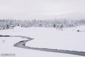 winter landscape photo in Alaska