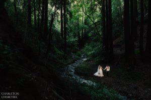 bride and groom hiking in the wilderness