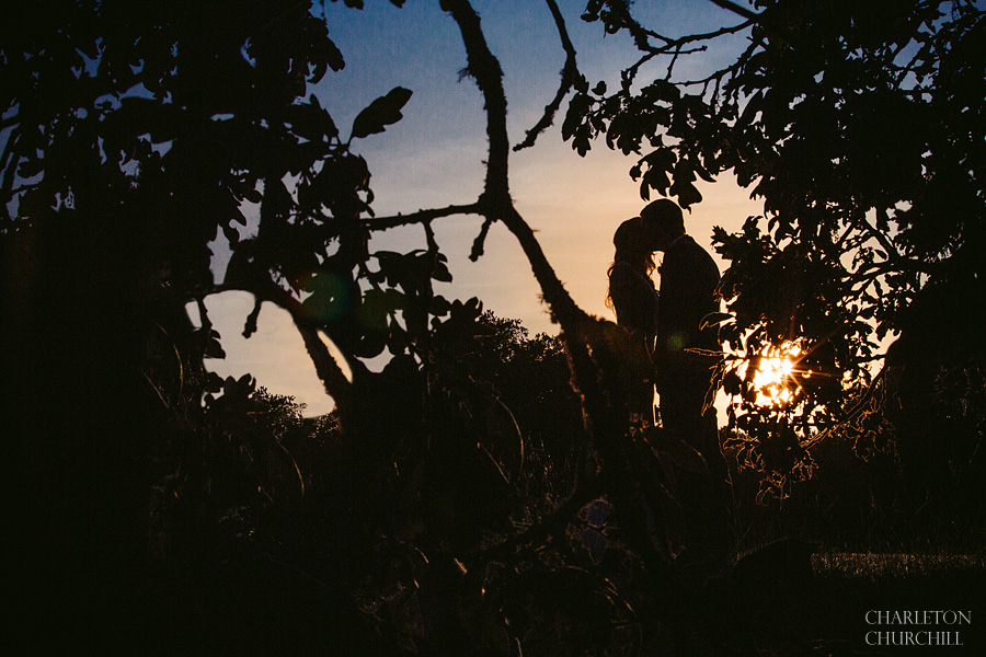 sonoma wedding sunset photo at anderson luxury ranch in sonoma california
