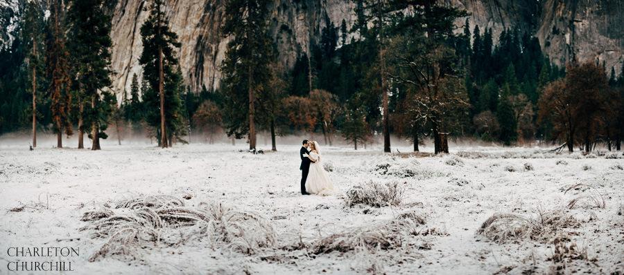 panorama yosemite wedding photos