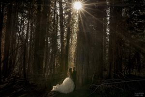elopement at yosemite with starburst of light through the threes